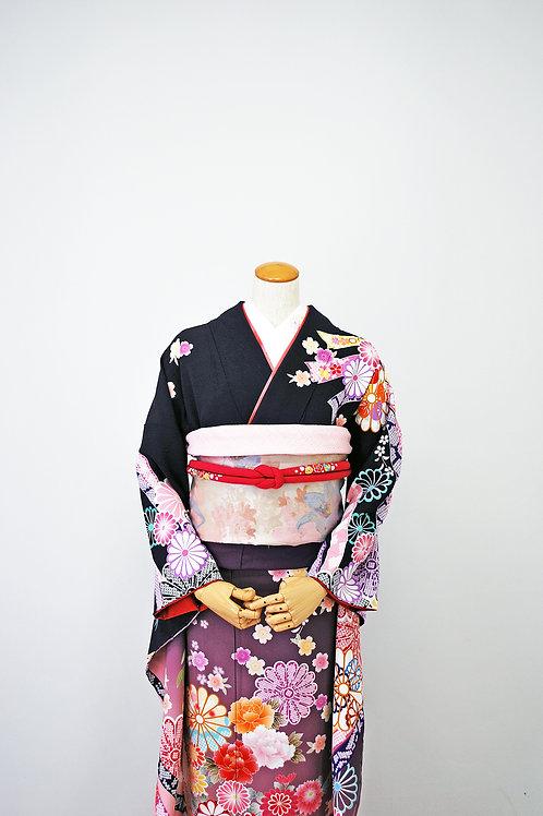 熨斗菊 紫