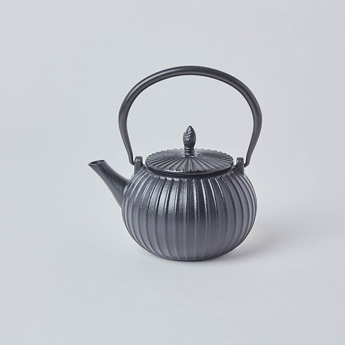 Wide variety tea drinking gifts. Affordable Tetsubin, Cast iron Teapots. Free delivery in Singapore.