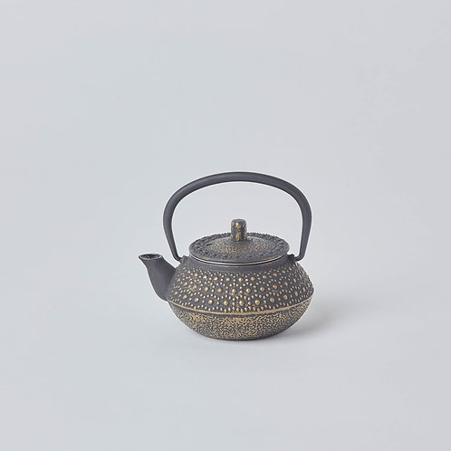 Only in Holland Village and Great World. Tetsubin, Cast iron Teapots. Traditional teapots for tea lovers.