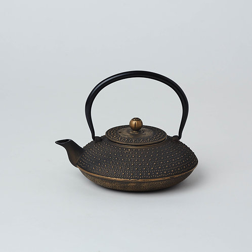 Housewarming , Welcome and Farewell gift ideas. Cast iron, Tetsubin Teapots. Affordable.