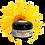 Thumbnail: 4 oz CBD & Arnica Cream