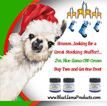 email stocking sale.jpg