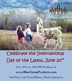 June 20th Day of Llama.jpg