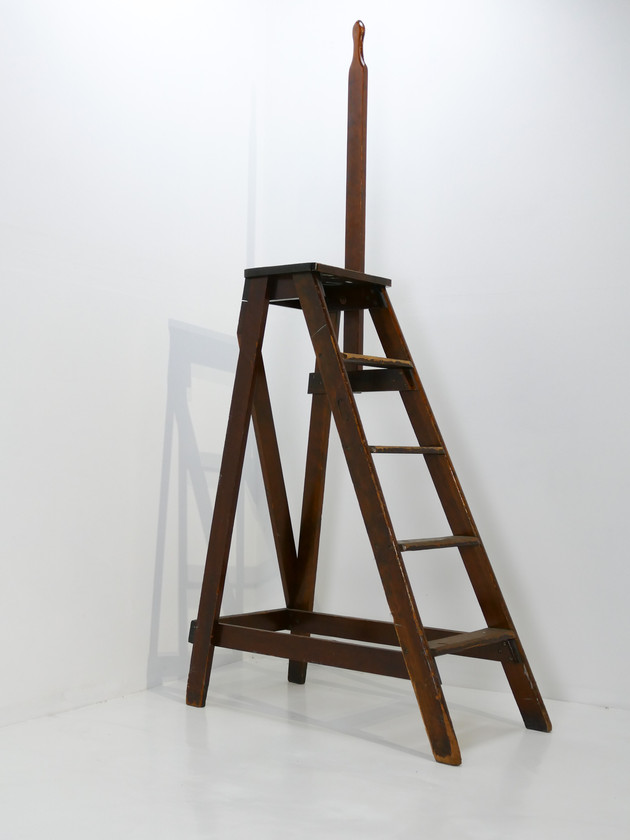 Library Ladders