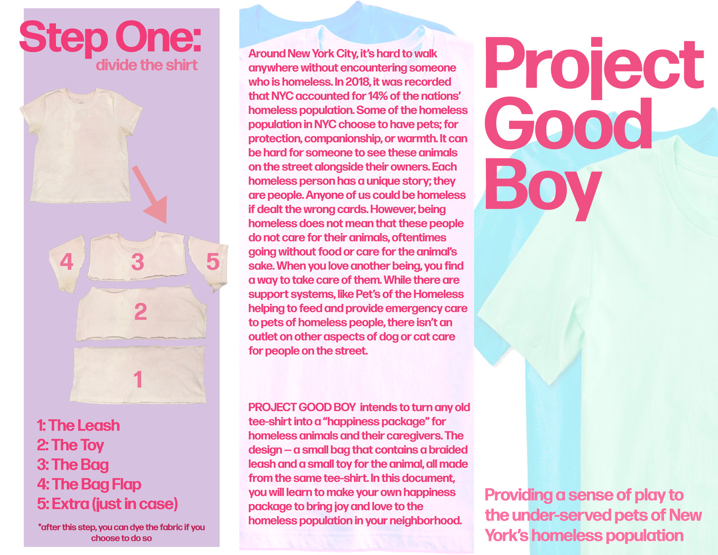 Project Good Boy pamphlet