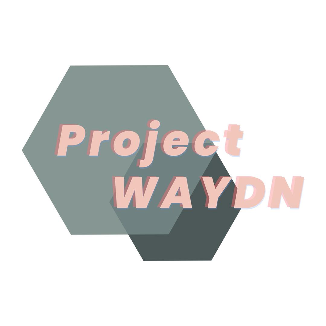 Project WAYDN Logo