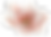 магнолия иконка.png