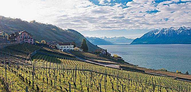 Service-Region Waadt Swiss-ServiceCenter