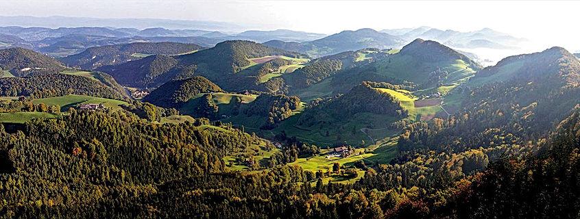 Service-Region Basel Land Swiss-serviceC