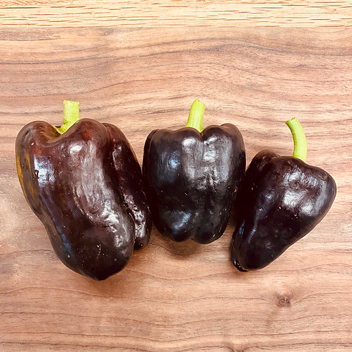 Black Bell Peppers, Salmonberry Farm