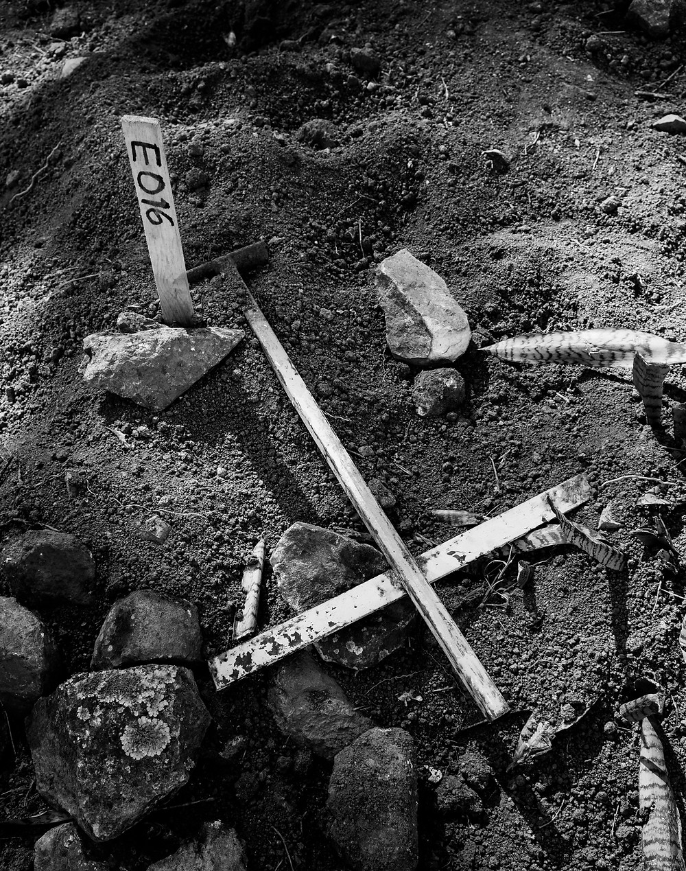 A stick with a number marks an exhumed grave in Azacualpa. Photo: Louis Bockner Photography