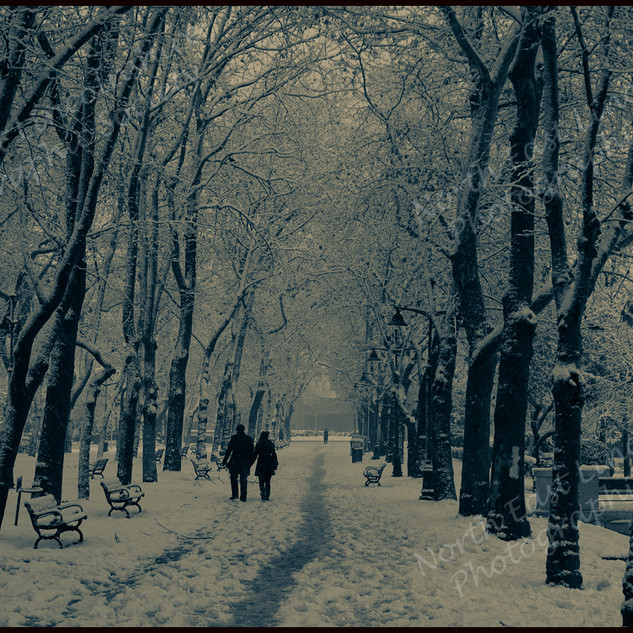 01 A Winter's Walk.jpg