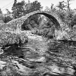 12 River running by.jpg