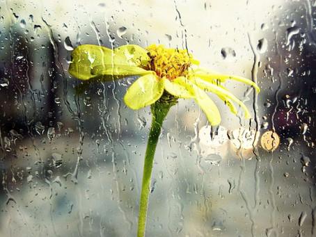 Chuva ,Pingos de Deus .