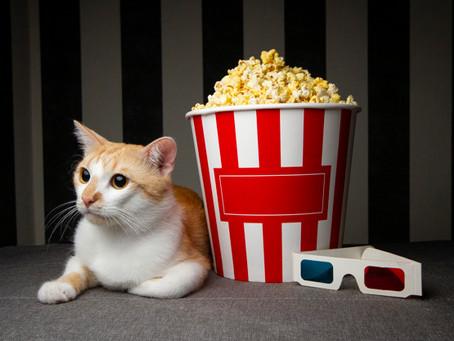 Partiu...cinema em casa