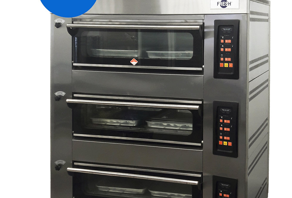 FRESH COMMON GAS OVEN (PID CONTROL PANEL)
