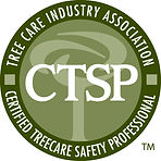 What is a CTSP?