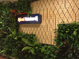 Living wall with additional geometrical knot pattern