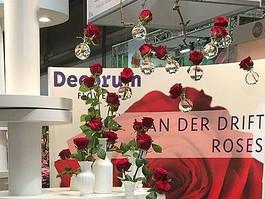 Royal FloraHolland - Trade Fair Aalsmeer