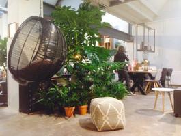 Koop uw planten bij Seven days in Delft