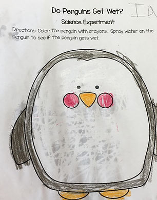 A sample of a student's work. It is a colored in penguin that has had water sprayed on it to show what happens if a penguin gets wet.