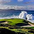 Pebble Beach Golf Couse Carmel.webp