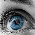 Assil Eye Institue Lasik Surgery.webp