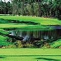 TPC of Myrtle Beach Golf Resort Myrtle B
