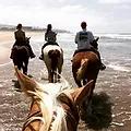 San Diego Beach rides - Horseback riding