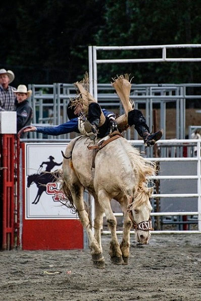 Rodeo.jpg - Rodeos Cowgirls  are GOD'S Wildest Angels, they wear Cowboy Hats for Halos and Horses for Wings. - Petfriendlyyellowpages.com - RODEO