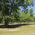 Nobel Leash  - Free Dog Leash Park.webp