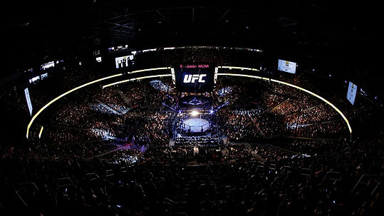 UFC - MMA - CAGE FIGHT.jpg - Pet friendly Yellow Pages - UFC is the Ultimate Fighting Championship is an American MMA - Mixed Martial Arts promotion company based in Las Vegas, Nevada