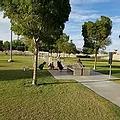 Barkin Basin Dog Park.webp