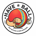 Have a Ball Dog Sitting.webp