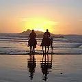 The Ranch Horseback Riding at the beach.