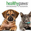 Healthy Paws Pet Insurance.webp
