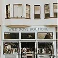 Wild Dove Boutique.webp
