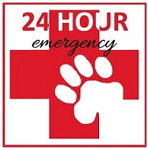 Best Las Vegas Pet Emergency Hospital, Dog Veterinary, Emergency Care, Open 24 Hour Emergency, Open Sundays, Pet Vets, Dogs, Cats, Birds, Small Animals, Extoic Pet Veterinary, Farm Animal Veterinary, Open 7 Days per Week, No Appointments Necessary, Mobil Veteriany, 24 Hr Hotline, Senior Discounts, Affordable, Payment Plan and Call Today