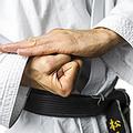 Karate Do Jo.webp