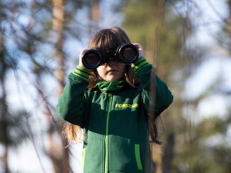 Werde ein Teil von FORSTARI-Forstdienste - Wir suchen dich...