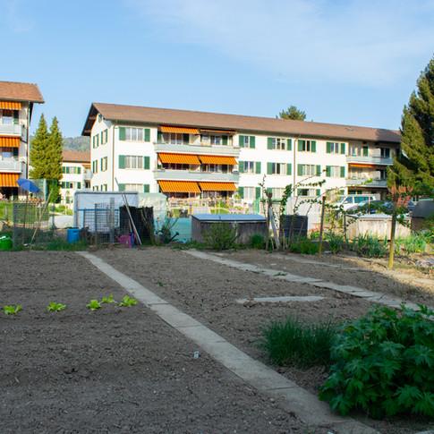 Garten WBG