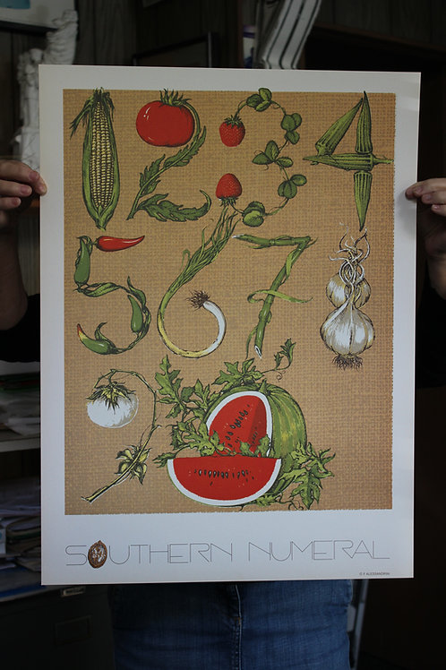Southern Numeral, Poster