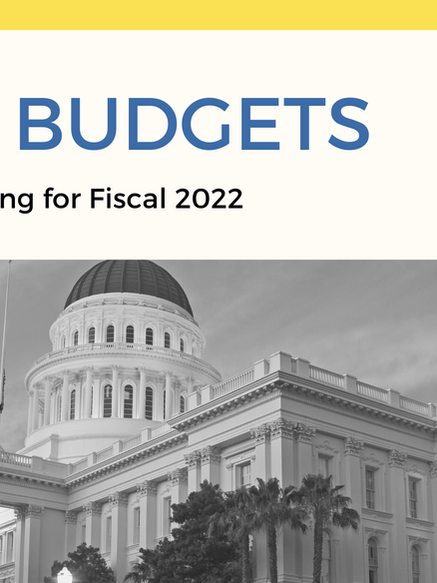 Fiscal 2022 State Budget IT Updates