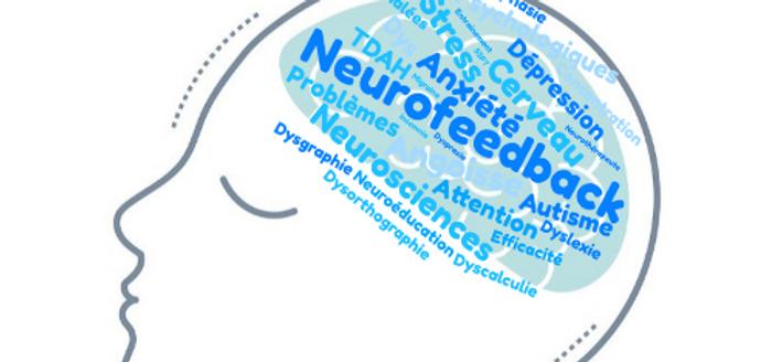 cerveau visage NFB.png