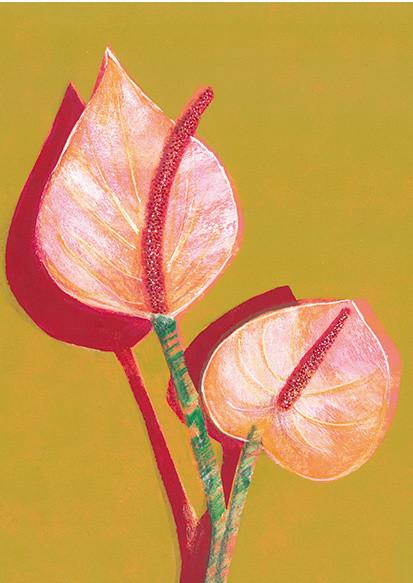 Fleur de Flamingo
