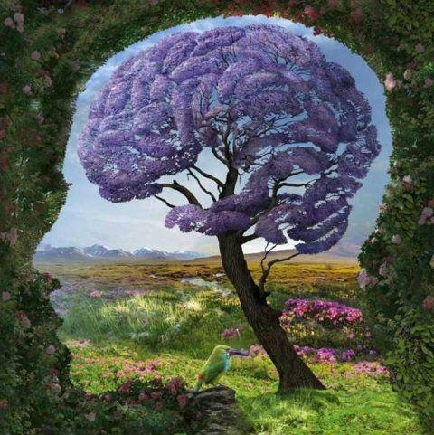 arbre-cerveau_1.jpg