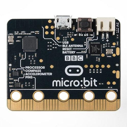 כרטיס פיתוח מיקרו: ביט