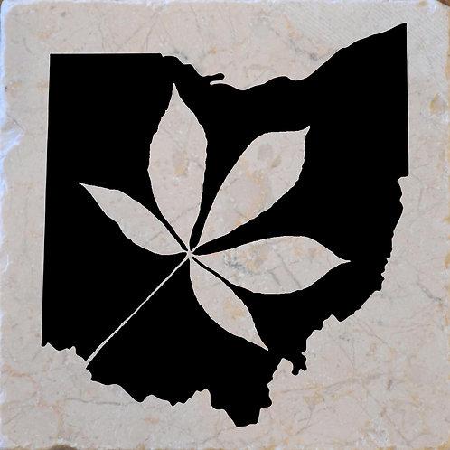 Ohio Buckeye Coaster