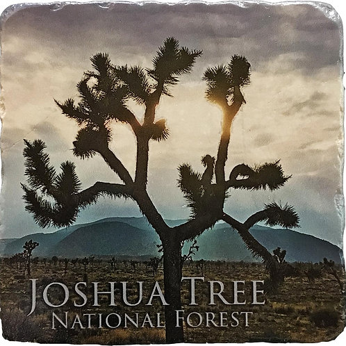 Joshua Tree National Forest Coaster
