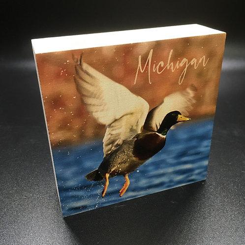Duck Takes Off Art Block